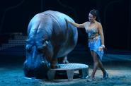 Circus Voyage - Premiere